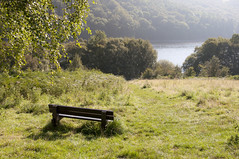 A peaceful morning (Keartona) Tags: uk morning england green field sunshine bench landscape view derbyshire peaceful reservoir september ladybower