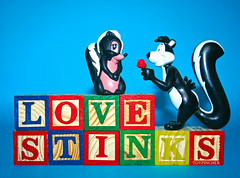 LOVE STINKS! (Toypincher) Tags: flower love toy wooden shy disney le block pepe pew skunk bashful stinks figire