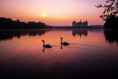 BEFORE SUNRISE (CUMBUGO) Tags: morning light sun sunlight lake color reflection bird castle water sunrise germany dresden swan nikon europe mood saxony nikkor f28 d800 moritzburg 1424mm d800e