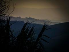 10660896_10203655351175778_1672718156_n (mmiriana) Tags: sunset tramonto nebbia beautuful