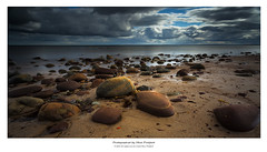 Return to Golspie (steve pickford) Tags: longexposure sea seaweed beach landscape scotland ross highlands stones north pebbles le subject golspie polariser rossshire easterross ndgrad groines leefilters otherkeywords bigstopper newsteeveslist