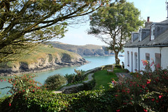 DSCF1555_1 (sffubs) Tags: uk sea cliff sun holiday water wales garden landscape fuji harbour cottage fujifilm pembrokeshire solva 2014 x100s fujifilmx100s fortcottages