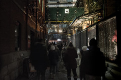 Social Sparkles @ Toronto Light Festival (A Great Capture) Tags: agreatcapture agc wwwagreatcapturecom adjm ash2276 ashleylduffus ald mobilejay jamesmitchell toronto on ontario canada canadian photographer northamerica torontoexplore winter l'hiver 2017 studiotoer thenetherlands istoric distillery district historic art light installations interactive sculpture city downtown lights urban night dark nighttime cityscape urbanscape eos digital dslr lens canon 70d streetphotography streetscape street calle
