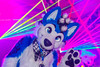 _MG_0651 (Tiger_Icecold) Tags: confuzzled cfz2016 cf2016 furcon furry convention fursuit birmingham party deaddog ddp deaddogparty