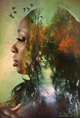 Mother Nature (Creative Photo Images, LLC) Tags: blackfemale trees atumn fall pond water birds texture topaz photoshop digitalpainting photograph iphone creativephotoimages llc