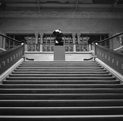 Art institute, Chicago (Johuhe) Tags: chicago art statue stairs rollei hall stand space room entrance retro semi institute mat 80s 124g epson form rodinal development yashica v500