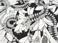 Golden Heart wip1 (Hello Angel Creative) Tags: flowers newzealand eye art illustration artwork heart drawing sketching seed progress wax create tre pods tui kowhai rotring artline aoteroa helloangel