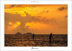 Stand up paddle nas praias do Rio (José Eduardo Nucci Photography) Tags: sunset nature brasil riodejaneiro landscape nikon cidademaravilhosa natureza paisagem pôrdosol 28300mm d800 standuppaddle brasilemimagens