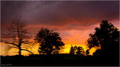 Sunset (Little Alicia) Tags: sunset sky orange ontario canada storm colour tree clouds evening twilight farm markham littlealicia nikond7100 nikonafs18105f3556gvr