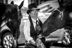 Young girl feeding horses (algirdas.chocianas) Tags: street horses people bw white black girl photography blackwhite candid young monotone monochromatic canonef200mmf28liiusm canoneos650d