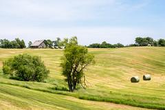 Iowa Countryside (nikons4me) Tags: sigmaaf55200mmf456dc ia iowa nikond7100 barn