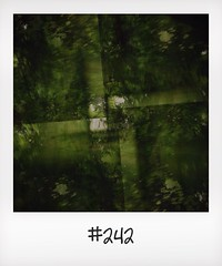 "#DailyPolaroid of 28-5-14 #242 • <a style=""font-size:0.8em;"" href=""http://www.flickr.com/photos/47939785@N05/14542715356/"" target=""_blank"">View on Flickr</a>"