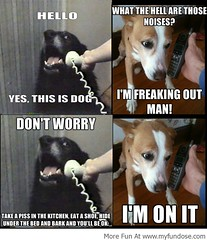 Best Funny Images & Memes,Funny Photos & Pictures| And You Will Be Okay! (Best Funny Images & Memes,Funny Photos & Pictures) Tags: gag funnypics memes funnypictures funnyimages lolpictures gagphotos hilariouspictures lolpics funnymemes ragecomics lolimages bestfunnypictures funmemes
