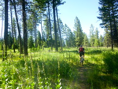 Waha Exploring (Doug Goodenough) Tags: waha mountains craig scott summer bicycle bike ride pedals spokes july 2014 14 trail gravel drg53114 drg53114p drg531