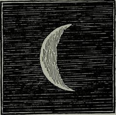 Anglų lietuvių žodynas. Žodis ashen reiškia Ia 1) pelenų spalvos; išbalęs; 2) pelenų, iš pelenų IIa uosio, uosinis lietuviškai.