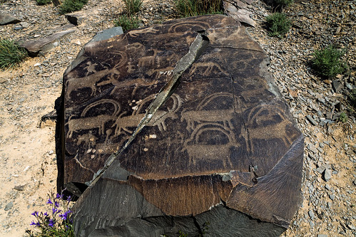 animal petroglyphs (Tamgaly - Kazakhstan) 2