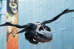 20140627-30-Toothless from How to train your dragon.jpg (Roger T Wong) Tags: dragon australia melbourne victoria exhibition animation cbd dreamworks toothless acmi 2014 australiancentreforthemovingimage canonef24105mmf4lisusm canon24105 canoneos6d rogertwong australiancentrefor