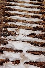 Trails (jannepoikolainen) Tags: snow tractor ice spring trails lumi jää kevät jäljet traktori urat