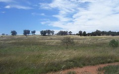 Lot 6 Gold Rush Road, Parkes NSW