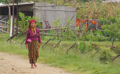Pokhara, Nepal Street Scenes  2014 (drburtoni) Tags: street nepal people pokhara