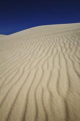 Dune Ripples (sabarber) Tags: sand dune ripples pemberton sanddune westernaustralia dentrecasteaux yeagarup
