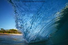 Makena Clarity 3 (Aaron Lynton) Tags: beach canon hawaii barrel wave maui surfing 7d boogie spl sponge makena shorebreak lynton bigbeach barreling lyntonproductions
