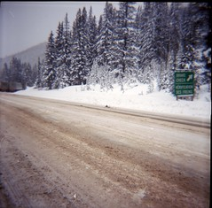 Break check (Beaulawrence) Tags: camera trees winter mountain snow canada storm mountains cold color colour classic 120 6x6 film ice sign forest square check lomo lomography highway break kodak pass rocky negative diana cover f roll medium format 100 trans reproduction ektar c41