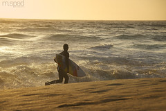 Surf on the coast (m.spad photography) Tags: ocean 1 coast sand highway surf pacific board surfing