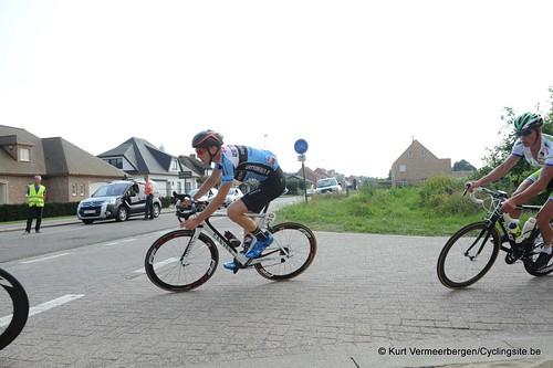Geel Oosterlo  (250)