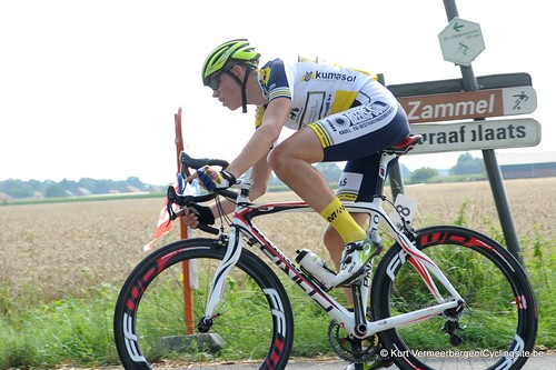 Geel Oosterlo  (148)