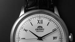 Orient Bambino (bencxs) Tags: macro watch olympus benjamin orient product chang omd bambino horology em5 bencxs