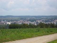 140823_Kellerkatzenweg_136