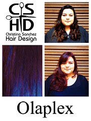 "Olaplex http://www.christinasanchezhairdesign.com • <a style=""font-size:0.8em;"" href=""http://www.flickr.com/photos/69107011@N07/14848891949/"" target=""_blank"">View on Flickr</a>"