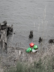 The After Party (Angela Redmon) Tags: trees red plants white plant tree green grass river balloons sadness loneliness gloomy sad balloon driftwood bleak desolate colorimage colourimage roomforcopy portraitorientation shadeofgreen shadeofred