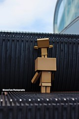 DANBO (WovenTam) Tags: toys danbo danboard minidanboard