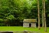 Old abandoned Home (Chaithanya Krishnan) Tags: green nature nationalpark nikon tn smoky abondoned smokymountain cadescove oldhome chaithanya oldhut greencolour nikond7000 dpsgreen chaithanyakrishnan