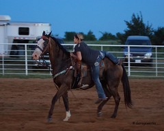 Welch Jr Rodeo, August 2014 (Garagewerks) Tags: horse male girl sport race all child sony barrel sigma august jr rope rodeo cans cowgirl f28 welch 70200mm roping 2014 barrelracing views50 views100 views150 slta77v