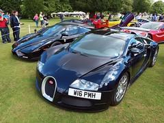 Bugatti Veyron, Wilton House Supercars (Hammerhead27) Tags: show blue red black classic car display parking fast ferrari enzo diablo bugatti lamborghini supercar wilton veyron paddock f40 2014 599 xj220 wiltonhousesupercars