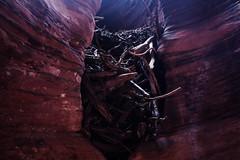 236a (markbyzewski) Tags: arizona page ugly slotcanyon logjam buckskingulch