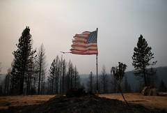 A tattered US flag (presstv.com) Tags: california ca us bestof topics justinsullivan topix toppics toppix pollockpines gettyimagerank1
