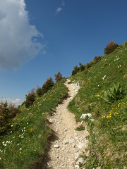 Hike to Mont Trlod (*_*) Tags: summer mountain lake france annecy nature june lac mount savoie mont massif hautesavoie 2014 rhonealpes bauges alpages trelod