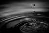 perle d'eau 13 (Laurent Hutinet) Tags: blackandwhite bw macro nature rainbow waterdrop eau noiretblanc nb gouttes autofocus photographyforrecreation rainbowofnature
