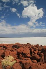 Lake Gairdner (JnyAroundTheWorld (#nophotoshop thanks for your co) Tags: colour nature landscape australia saltlake outback naturalwonder southaustralia contrasts australie jny lakegairdner australiedusud