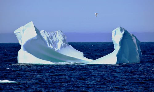 Flying over an Iceberg at Cape Bonavista, Newfoundland