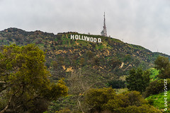 Hollywood Sign at Lake Hollywood Park (lpvisuals.com) Tags: 2017 a7ii beach california city fe hollywood losangeles santamonica sunrise usa sun sand sunset socal cali la shermanoaks beverlyhills burbank red carpet pacific ocean pacificocean pacificpark waves bike avenueofthestars los angeles us centurycity twilight blue hour traffic trail lights night travel photo photography yen baet america cityscape road skyline outdoor architecture building structure sony sonyfe venicebeach skateboarding lake park