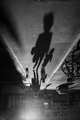 Trio (maekke) Tags: zürich shadow family woman child dog highcontrast fujifilm x100t streetphotography light evening 35mm switzerland ch 2017 bw noiretblanc silhouette