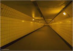 Maastunnel 9 (Rens Timmermans) Tags: canon5dmk3 sigma1224mm tunnels 75jaarmaastunnel rotterdam nationalgeographic