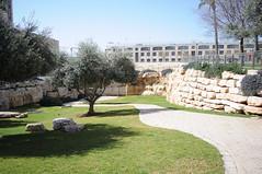011 to jaffa gat_002 (Teodor Ion) Tags: terrasanta gerusalemme montesion israeljerusalem templemount oldcityofjerusalem