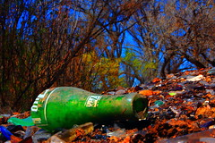 Bosque--The Last Bottle of 7-Up (richardzx) Tags: bosque thebosque albuquerque richardzx 7up uncola