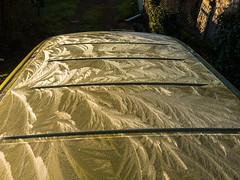 Frozen roof/ frostwork (Elise de Korte) Tags: fr france frankrijk ldf lafrance frostwork ijsbloem ijsbloemen